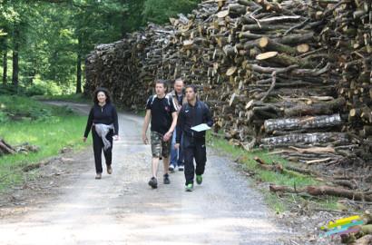 team building en forêt